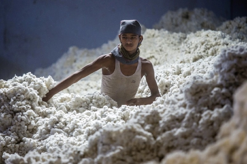 ICAC predicts growth slowdown of world cotton consumption